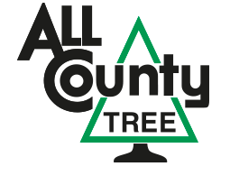 All County Tree